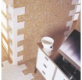 Čistič skleněných mozaiek AlpinChemie