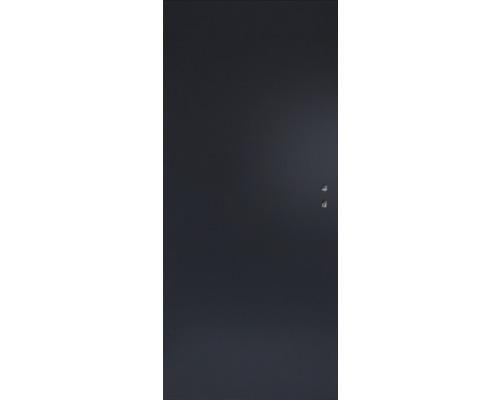 Plechové dveře Hörmann ZK, 80 L, antracit