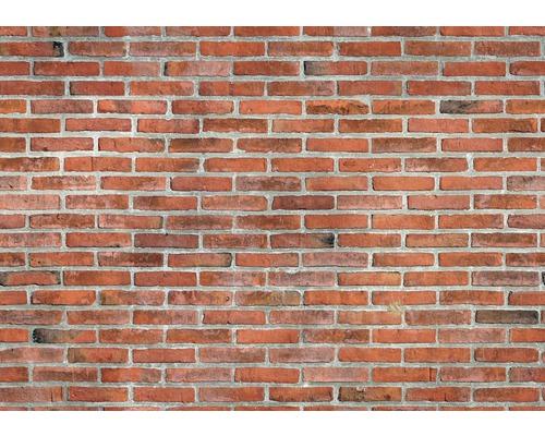 Cihlový obklad Wildstone Castle Brick 313 28 x 6,5 cm
