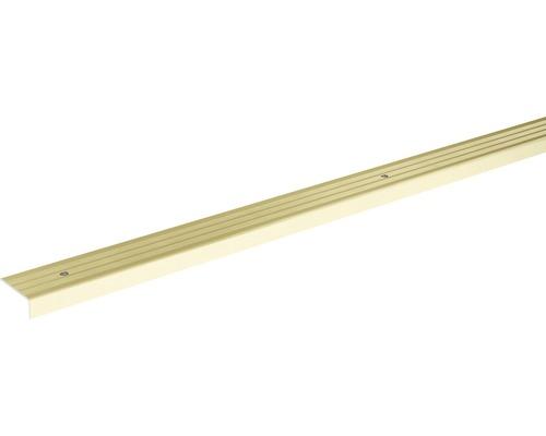 Ukončovací lišta schodová Skandor šroubovací 2700 x 24,5 x 9,5 mm champagne
