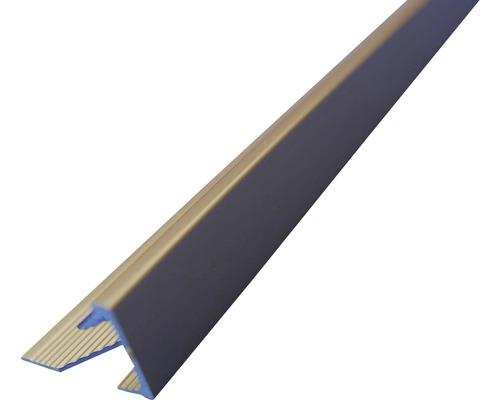 Lišta eloxovaný hliník AL112 2500x11 mm