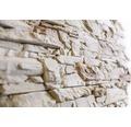 Obkladový kámen Dafina 39,8x9,8x3,5 cm