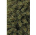 Umělý vánoční stromek Chamonix 215 cm