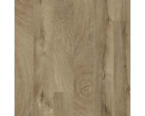 Laminátová podlaha Kaindl Masterfloor 8.0 dub fresco O250 LM