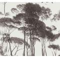Vliesová tapeta stromy tm.šedá béžová