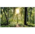 Infračervený topný obraz 600W dekor les