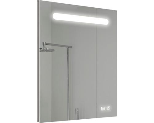 LED zrcadlo do koupelny Lina 50 x 70 cm IP 44