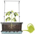 Opěra na rostliny Green Wall pro Magnus 64 x 25 cm k truhlíkům Magnus 80 cm