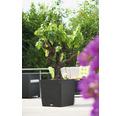 Samozavlažovací květináč plastový Lechuza Cube Cottage 50x50x54 cm šedý