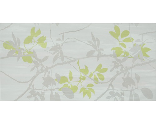 Dekor Varna Lustro Gris/Verde 25x50 cm