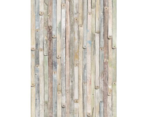 Fototapeta Komar, motiv dřeva, hnědo-béžová