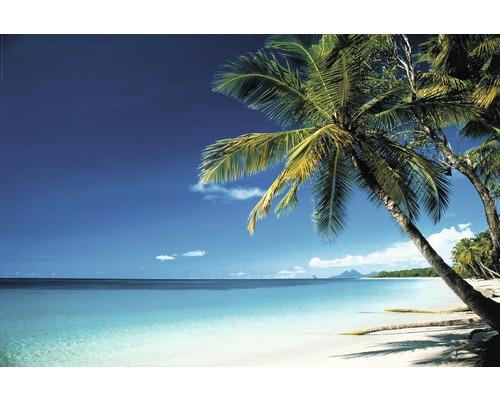 Plakát Maxi Beach - Morning 61x91,5 cm