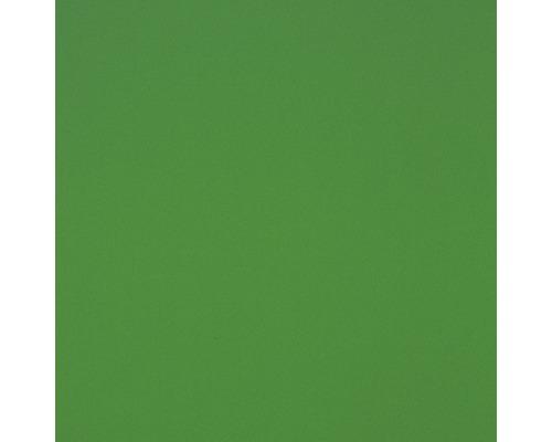 Plastová deska GUTTA Hobbycolor z tvrdé pěny 1500 x 500 x 3 mm hladká, zelená