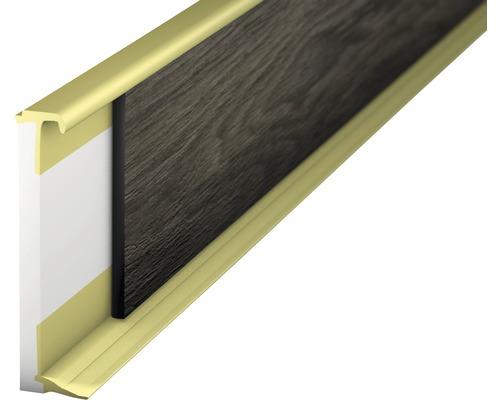 Vlepovací lišta k design podlaze šampaň 2,0-3,5mm;2,5m;58mm
