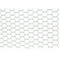 Chovatelské pletivo PILECKÝ Hobby Zn + PVC Ø 13 mm 100 cm x 10 m zelené