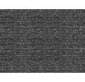 Čistící zóna CAPRI 2011 černá 07 šířka 2 m